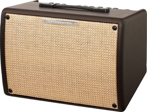 Ibanez T30II-S Troubadour 30W Acoustic Guitar Amplifier